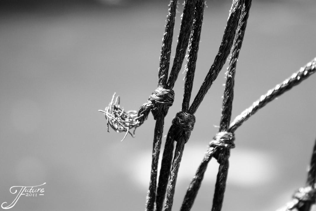 1.03 - Rope